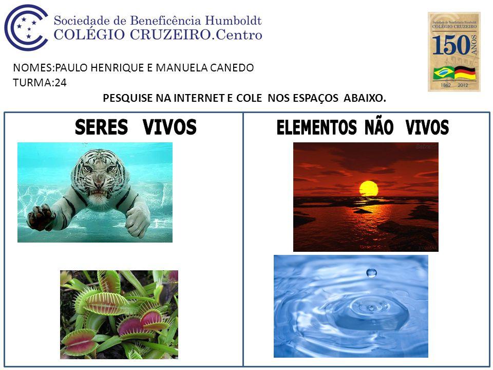 NOMES:PAULO HENRIQUE E MANUELA CANEDO TURMA:24 PESQUISE NA INTERNET E COLE NOS ESPAÇOS ABAIXO.