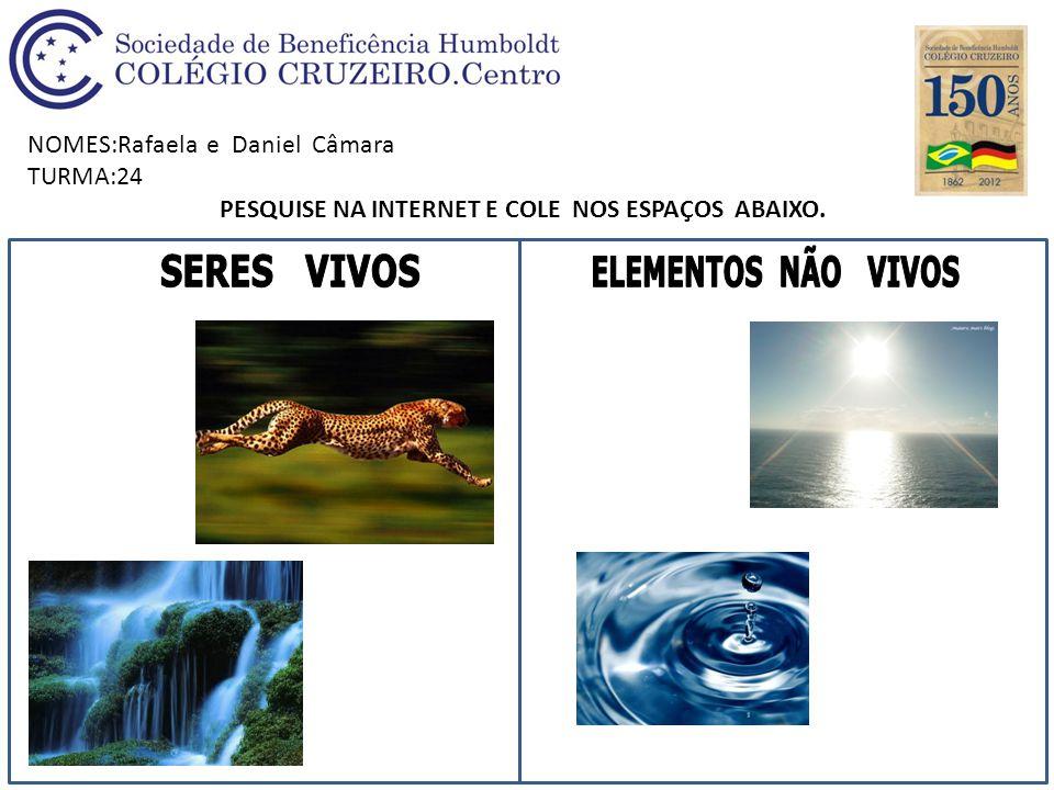NOMES:Rafaela e Daniel Câmara TURMA:24 PESQUISE NA INTERNET E COLE NOS ESPAÇOS ABAIXO.