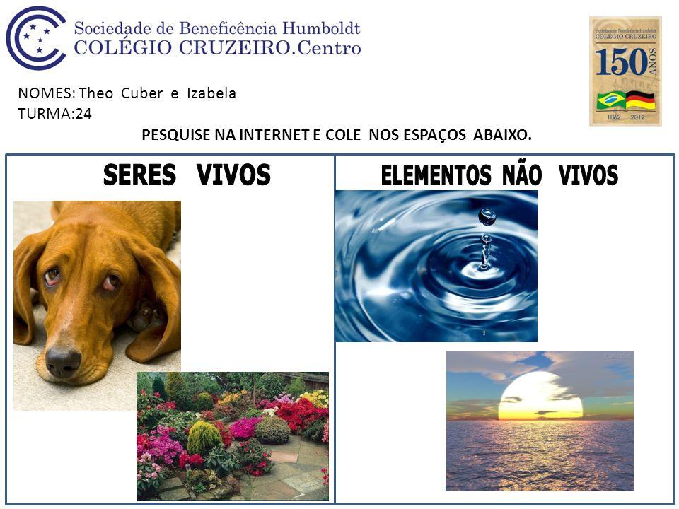 NOMES: Theo Cuber e Izabela TURMA:24 PESQUISE NA INTERNET E COLE NOS ESPAÇOS ABAIXO.