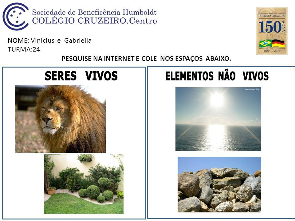 NOME: Vinicius e Gabriella TURMA:24 PESQUISE NA INTERNET E COLE NOS ESPAÇOS ABAIXO.