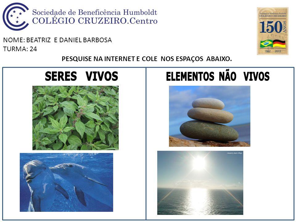 NOME: BEATRIZ E DANIEL BARBOSA TURMA: 24 PESQUISE NA INTERNET E COLE NOS ESPAÇOS ABAIXO.