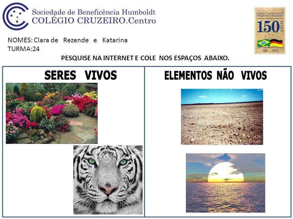 NOMES: Clara de Rezende e Katarina TURMA:24 PESQUISE NA INTERNET E COLE NOS ESPAÇOS ABAIXO.
