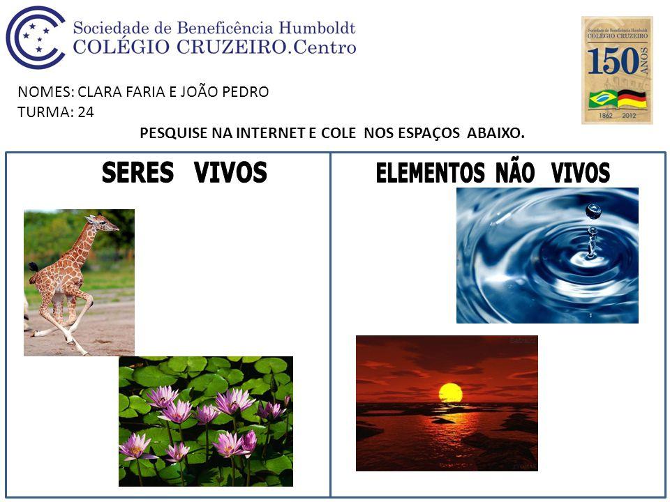 NOMES: CLARA FARIA E JOÃO PEDRO TURMA: 24 PESQUISE NA INTERNET E COLE NOS ESPAÇOS ABAIXO.