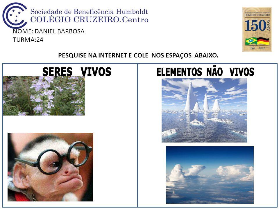 NOME: DANIEL BARBOSA TURMA:24 PESQUISE NA INTERNET E COLE NOS ESPAÇOS ABAIXO.