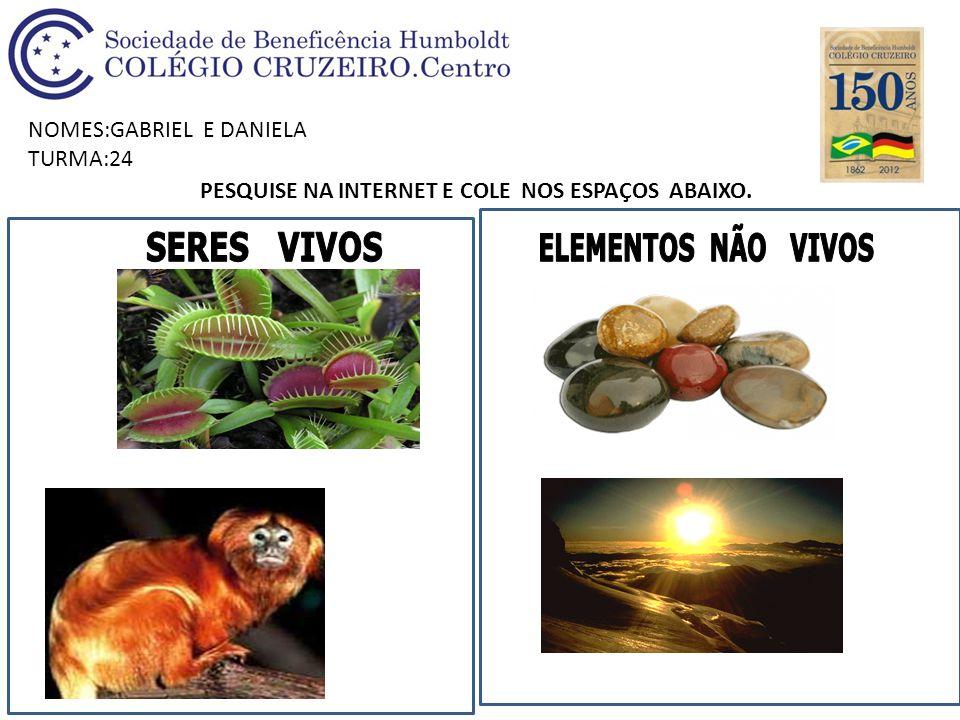 NOMES:GABRIEL E DANIELA TURMA:24 PESQUISE NA INTERNET E COLE NOS ESPAÇOS ABAIXO.