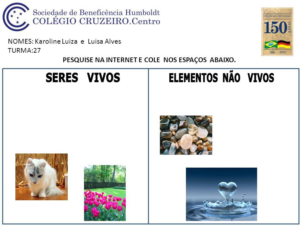 NOMES: Karoline Luiza e Luisa Alves TURMA:27 PESQUISE NA INTERNET E COLE NOS ESPAÇOS ABAIXO.