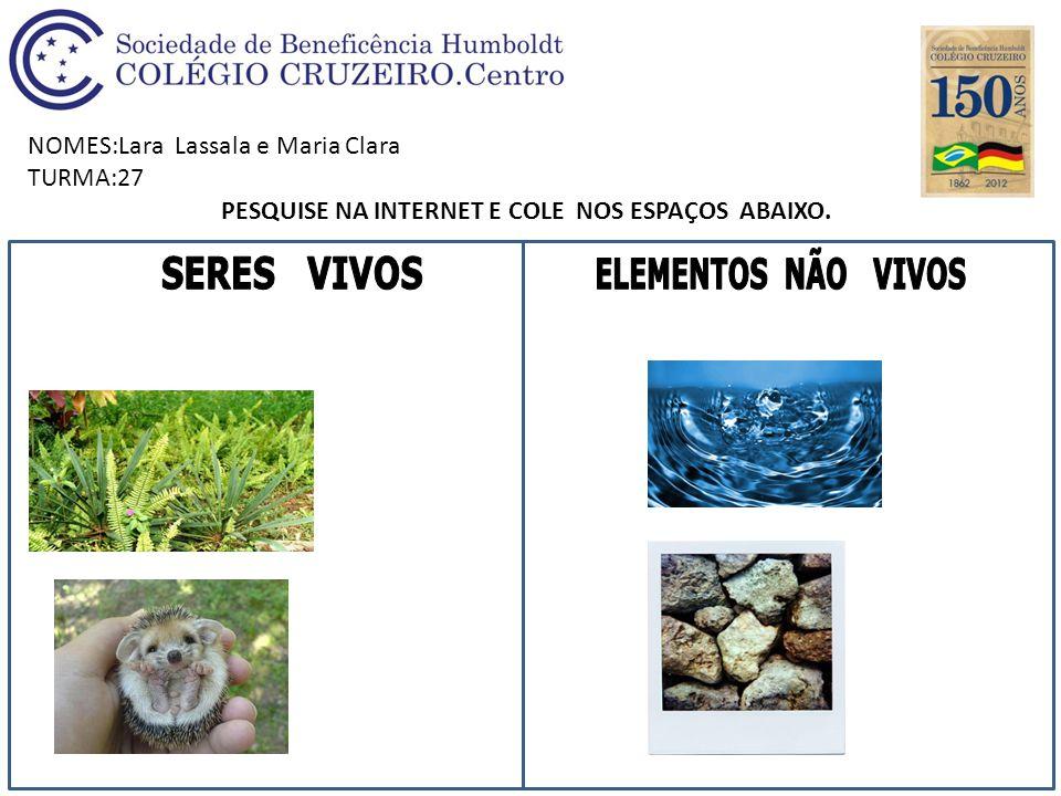 NOMES:Lara Lassala e Maria Clara TURMA:27 PESQUISE NA INTERNET E COLE NOS ESPAÇOS ABAIXO.