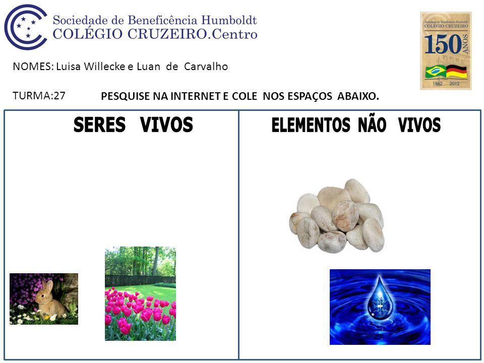 NOMES: Luisa Willecke e Luan de Carvalho TURMA:27 PESQUISE NA INTERNET E COLE NOS ESPAÇOS ABAIXO.