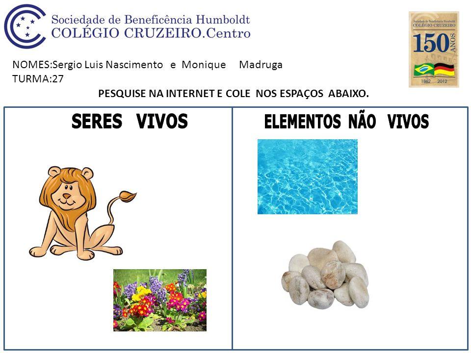 NOMES:Sergio Luis Nascimento e Monique Madruga TURMA:27 PESQUISE NA INTERNET E COLE NOS ESPAÇOS ABAIXO.