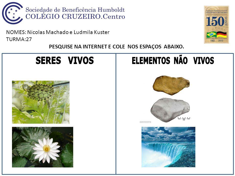 NOMES: Nicolas Machado e Ludmila Kuster TURMA:27 PESQUISE NA INTERNET E COLE NOS ESPAÇOS ABAIXO.