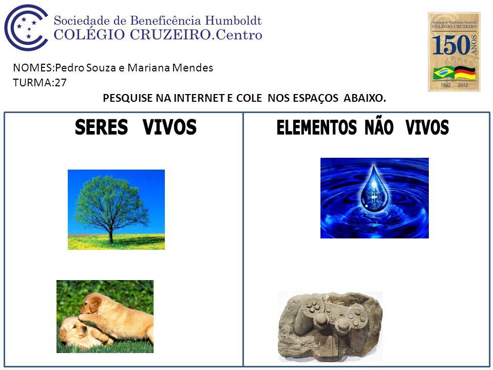 NOMES:Pedro Souza e Mariana Mendes TURMA:27 PESQUISE NA INTERNET E COLE NOS ESPAÇOS ABAIXO.