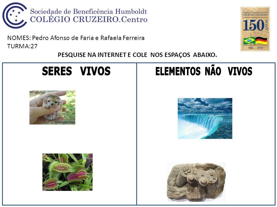 NOMES: Pedro Afonso de Faria e Rafaela Ferreira TURMA:27 PESQUISE NA INTERNET E COLE NOS ESPAÇOS ABAIXO.