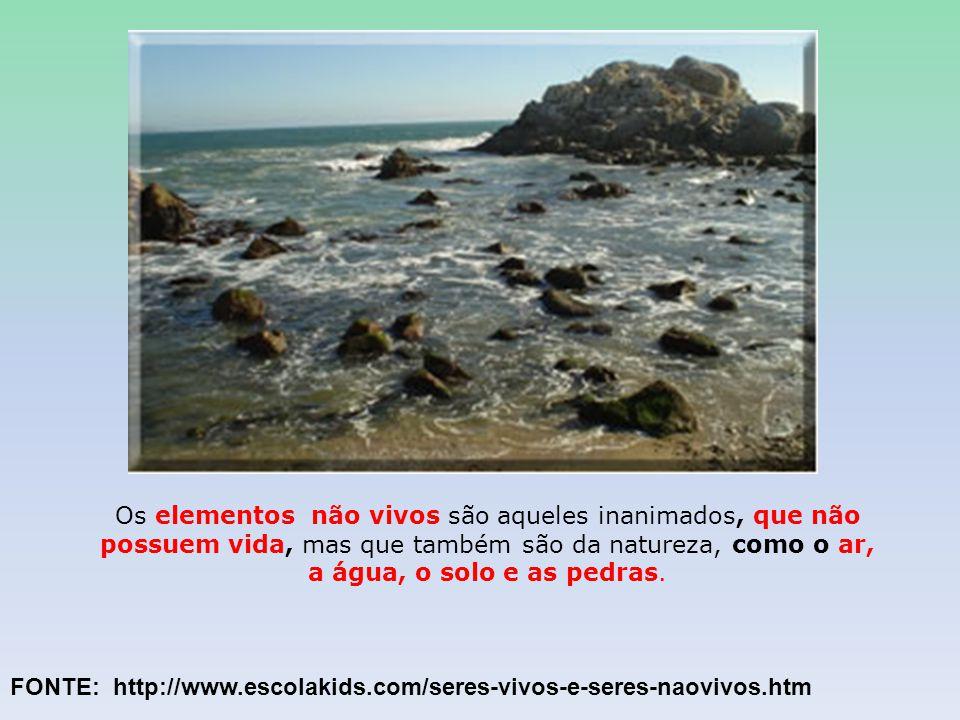 Os elementos não vivos são aqueles inanimados, que não possuem vida, mas que também são da natureza, como o ar, a água, o solo e as pedras. FONTE: htt