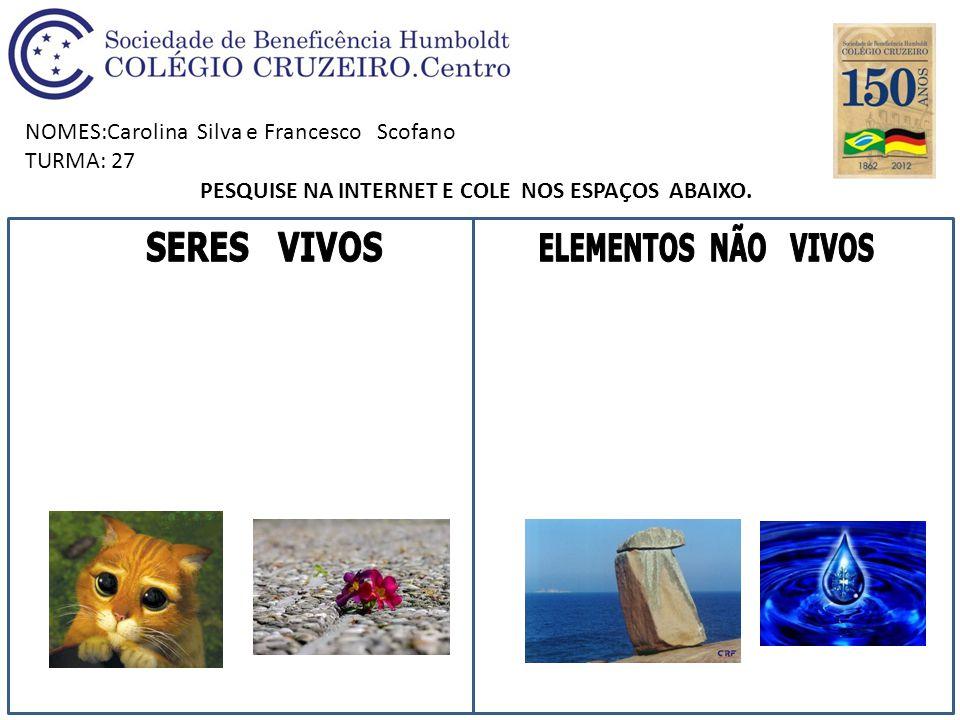 NOMES:Carolina Silva e Francesco Scofano TURMA: 27 PESQUISE NA INTERNET E COLE NOS ESPAÇOS ABAIXO.