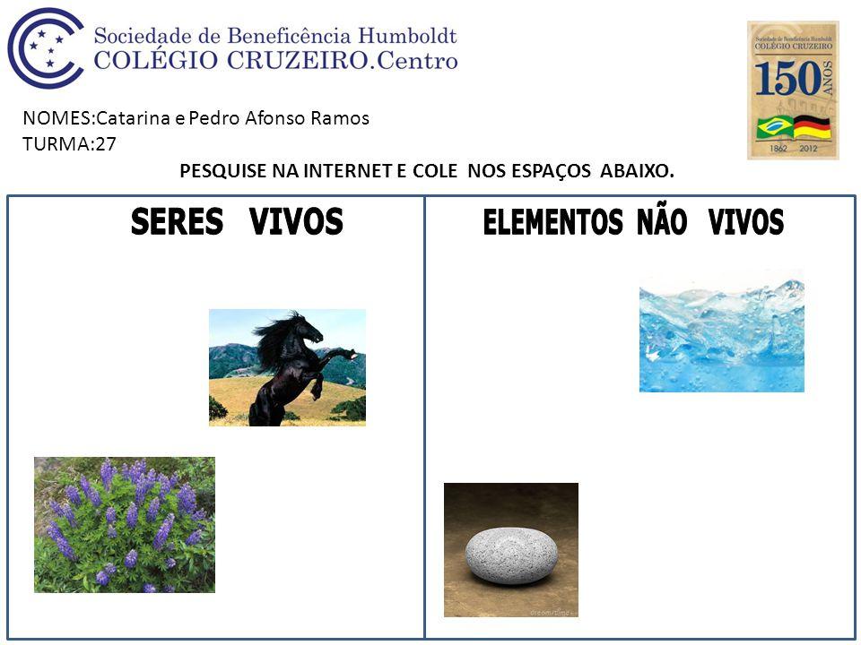 NOMES:Catarina e Pedro Afonso Ramos TURMA:27 PESQUISE NA INTERNET E COLE NOS ESPAÇOS ABAIXO.