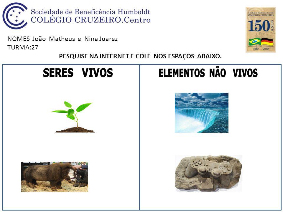 NOMES João Matheus e Nina Juarez TURMA:27 PESQUISE NA INTERNET E COLE NOS ESPAÇOS ABAIXO.