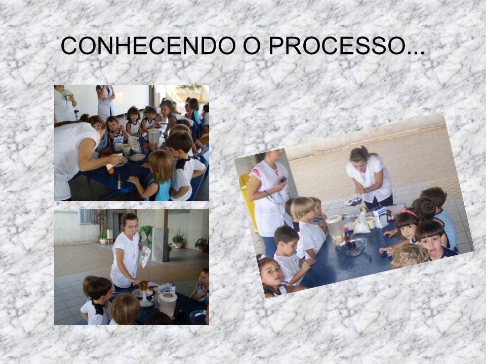 CONHECENDO O PROCESSO...
