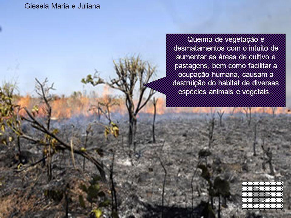 A poluição atmosférica refere-se a mudanças da atmosfera que podem causar impacto a nível ambiental ou de saúde humana, através da contaminação por ga
