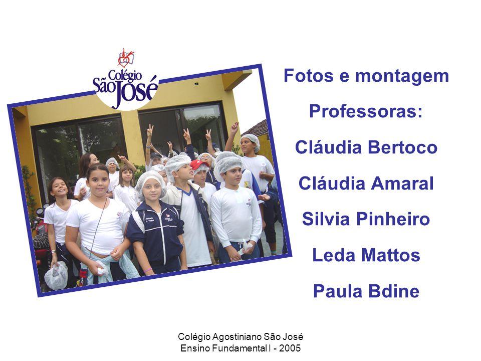 Colégio Agostiniano São José Ensino Fundamental I - 2005 Fotos e montagem Professoras: Cláudia Bertoco Cláudia Amaral Silvia Pinheiro Leda Mattos Paul