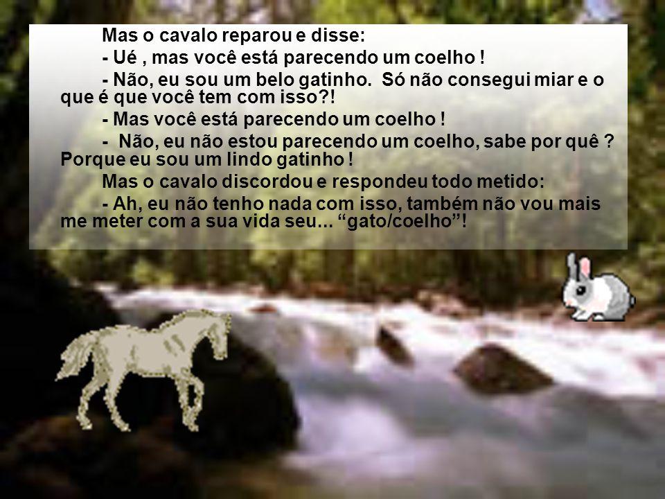 Mas o cavalo estava ali por perto e escutou o que ele dizia e falou: -- Mas, senhor Coelho, o que aconteceu? Então, o gato/coelho disse se exibindo :