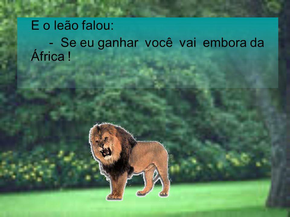 O Hipopótamo falou: - Se você perder, eu vou ser o rei da floresta e eu vou te transformar em um ursinho.