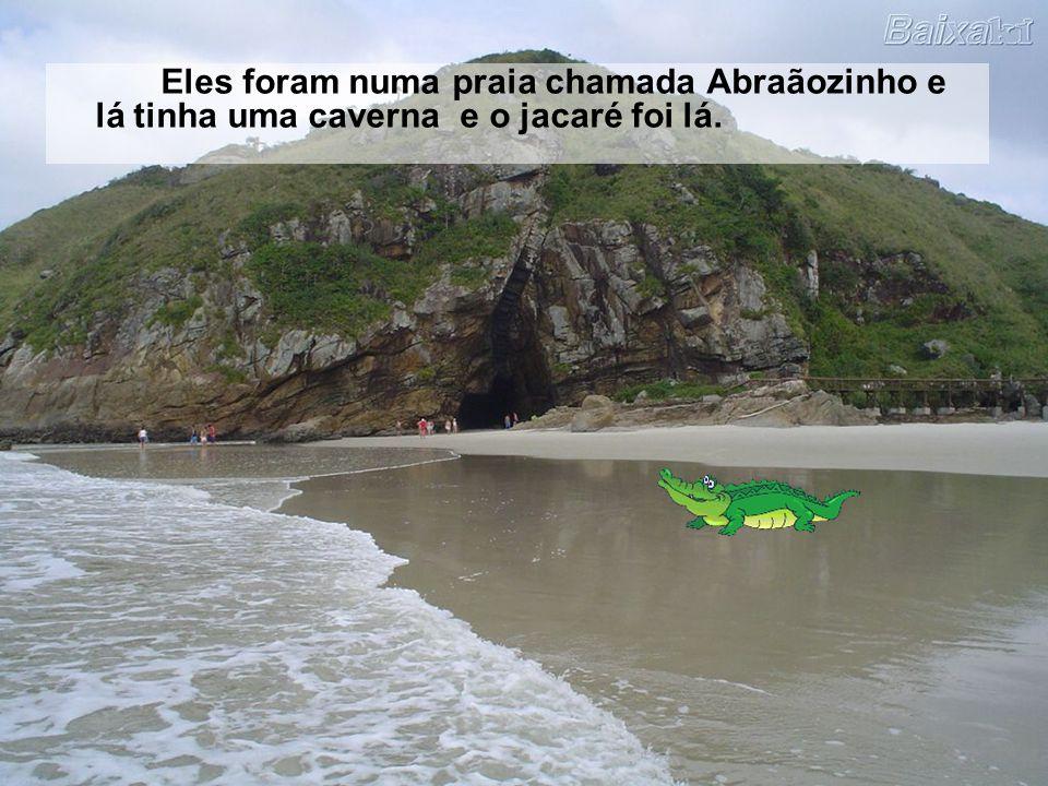 A família do jacaré viajou para Ilha Grande e foi numa praia. Lá o jacaré viu vários bebês. O jacaré chorou e chorou e a mãe falou: - Meu filho, não c