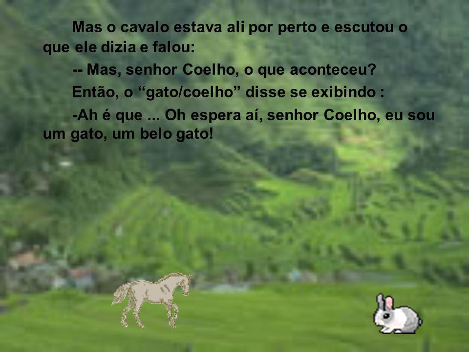 Mas o cavalo estava ali por perto e escutou o que ele dizia e falou: -- Mas, senhor Coelho, o que aconteceu.