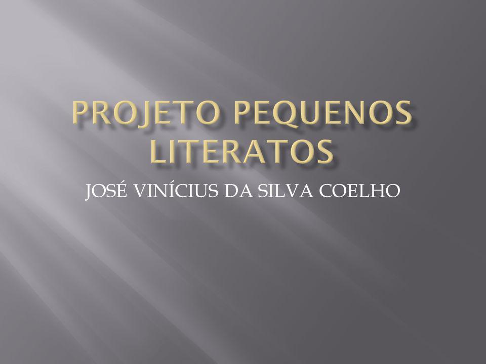 JOSÉ VINÍCIUS DA SILVA COELHO