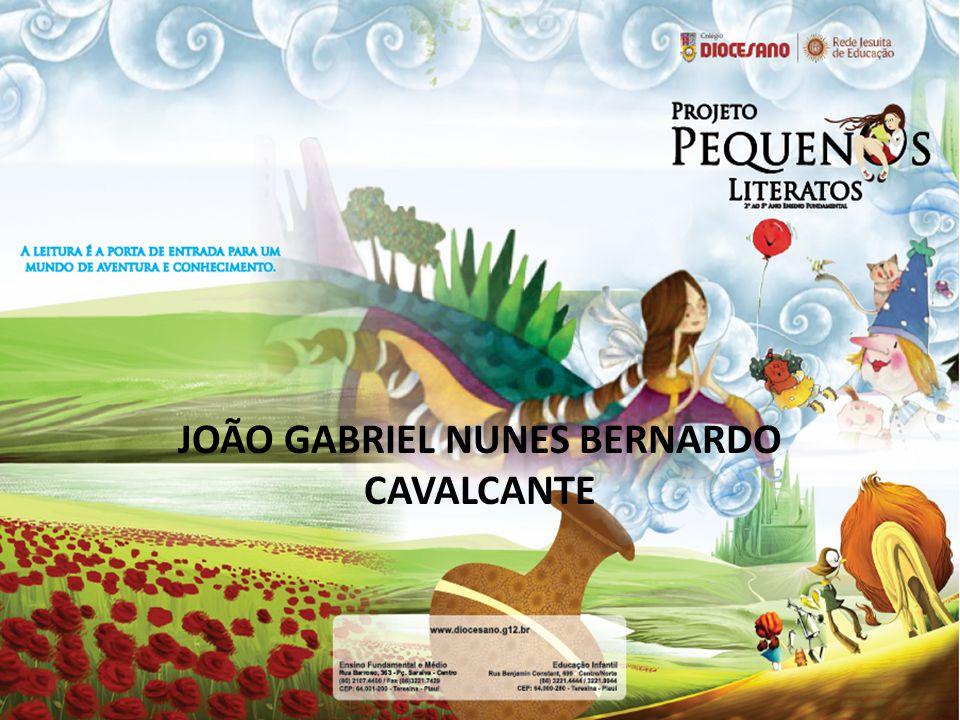 JOÃO GABRIEL NUNES BERNARDO CAVALCANTE