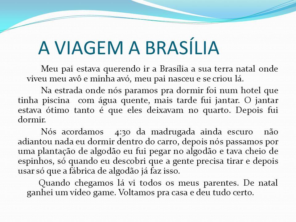A VIAGEM A BRASÍLIA Meu pai estava querendo ir a Brasília a sua terra natal onde viveu meu avô e minha avó, meu pai nasceu e se criou lá. Na estrada o