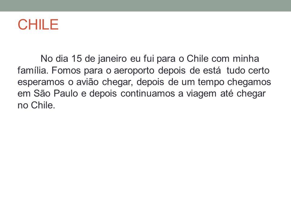 CHILE No dia 15 de janeiro eu fui para o Chile com minha família. Fomos para o aeroporto depois de está tudo certo esperamos o avião chegar, depois de