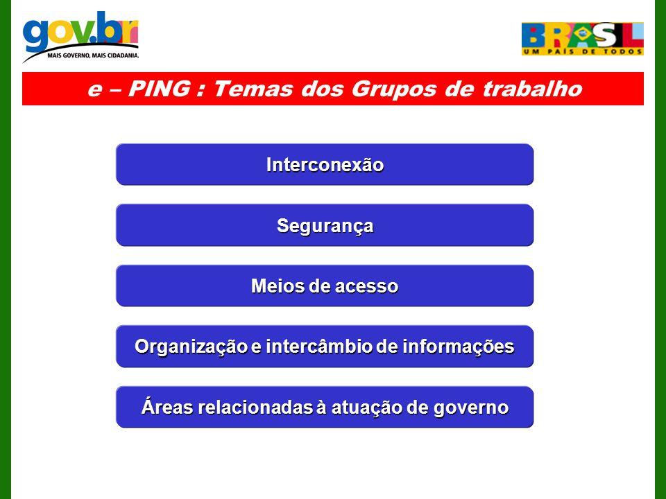 e – PING : Temas dos Grupos de trabalho Segurança Interconexão Meios de acesso Organização e intercâmbio de informações Áreas relacionadas à atuação de governo