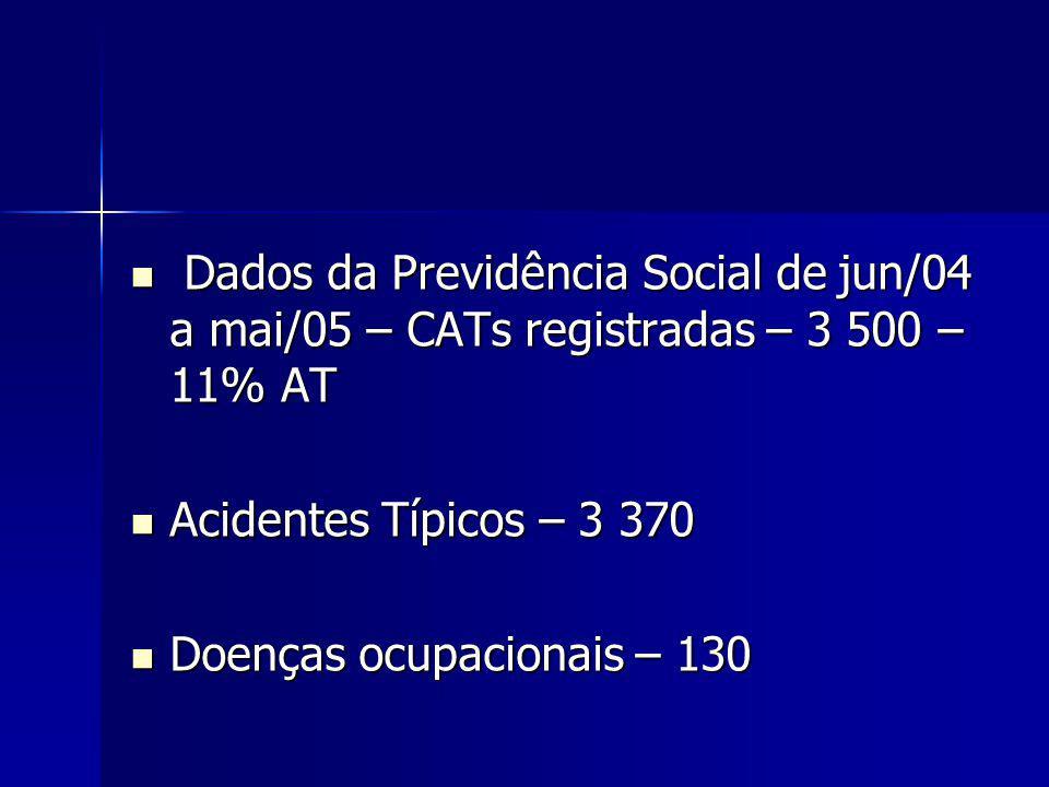 Dados da Previdência Social de jun/04 a mai/05 – CATs registradas – 3 500 – 11% AT Dados da Previdência Social de jun/04 a mai/05 – CATs registradas – 3 500 – 11% AT Acidentes Típicos – 3 370 Acidentes Típicos – 3 370 Doenças ocupacionais – 130 Doenças ocupacionais – 130