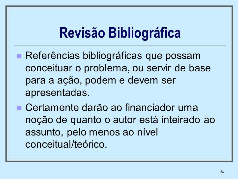 54 Revisão Bibliográfica Referências bibliográficas que possam conceituar o problema, ou servir de base para a ação, podem e devem ser apresentadas. C
