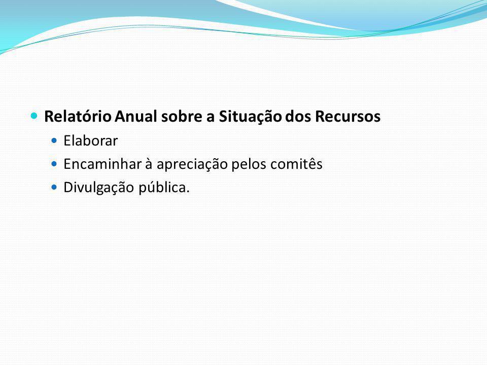 Relatório Anual sobre a Situação dos Recursos Elaborar Encaminhar à apreciação pelos comitês Divulgação pública.