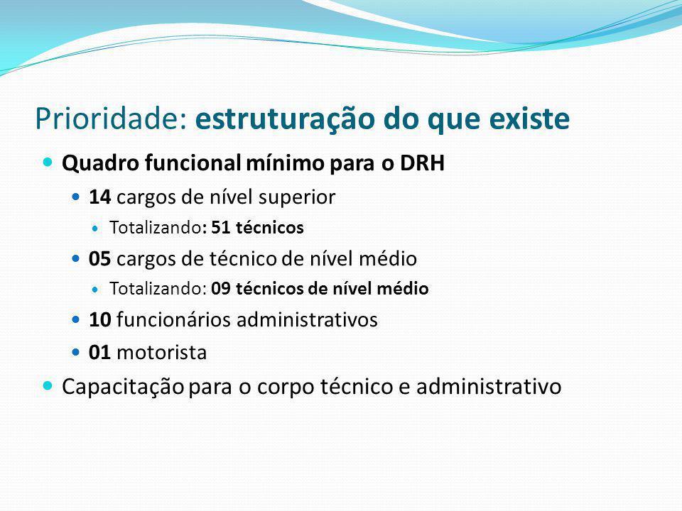 Prioridade: estruturação do que existe Quadro funcional mínimo para o DRH 14 cargos de nível superior Totalizando: 51 técnicos 05 cargos de técnico de