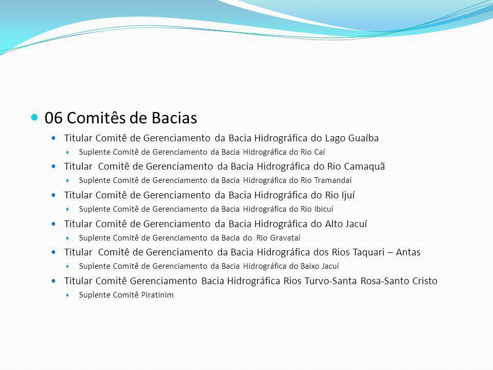 06 Comitês de Bacias Titular Comitê de Gerenciamento da Bacia Hidrográfica do Lago Guaíba Suplente Comitê de Gerenciamento da Bacia Hidrográfica do Ri