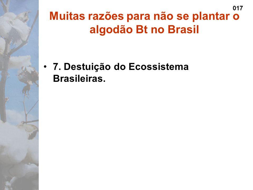 7. Destuição do Ecossistema Brasileiras.