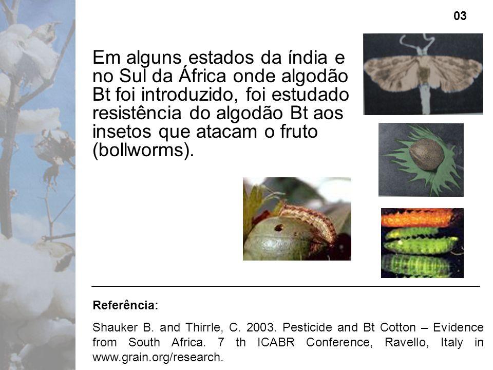 Em alguns estados da índia e no Sul da África onde algodão Bt foi introduzido, foi estudado resistência do algodão Bt aos insetos que atacam o fruto (bollworms).
