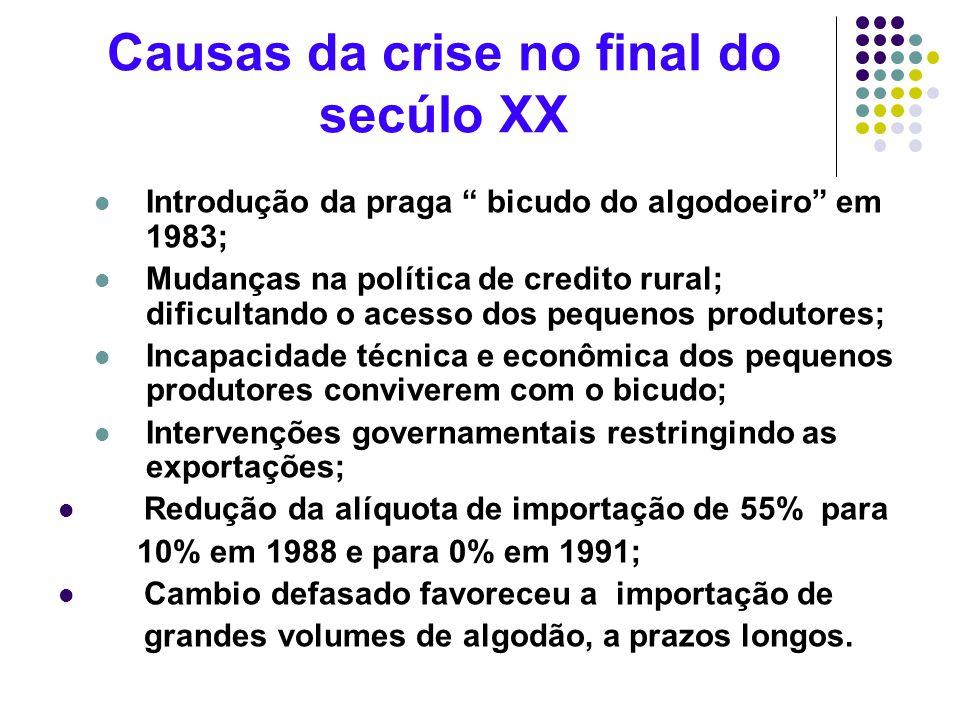 Causas da crise no final do secúlo XX Introdução da praga bicudo do algodoeiro em 1983; Mudanças na política de credito rural; dificultando o acesso d