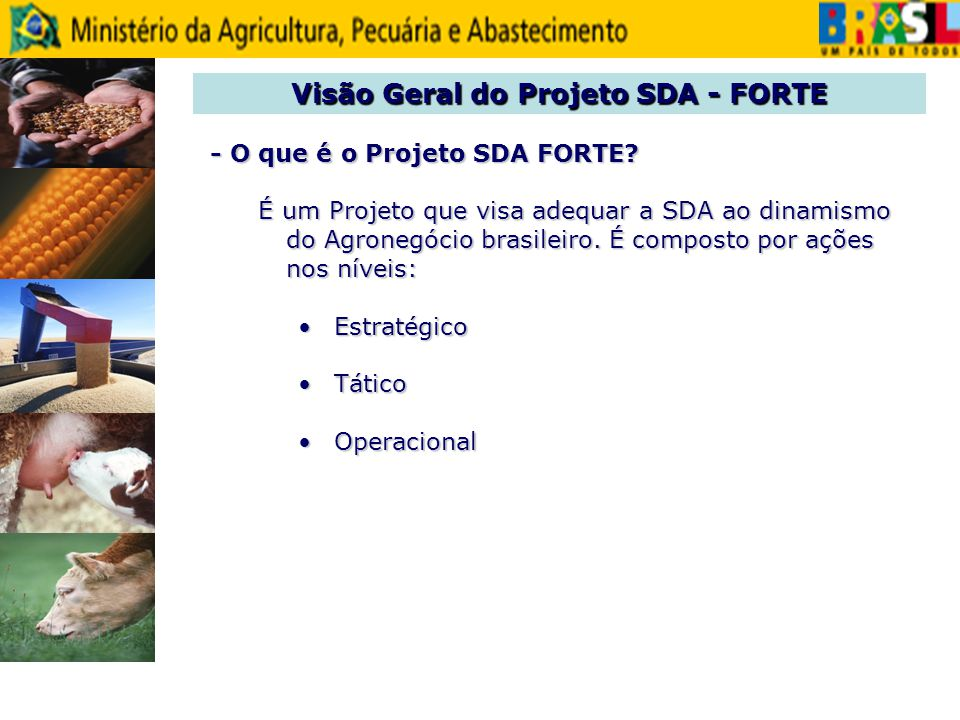 - O que é o Projeto SDA FORTE? - O que é o Projeto SDA FORTE? É um Projeto que visa adequar a SDA ao dinamismo do Agronegócio brasileiro. É composto p