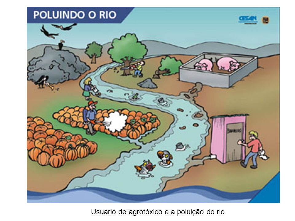 Usuário de agrotóxico e a poluição do rio.
