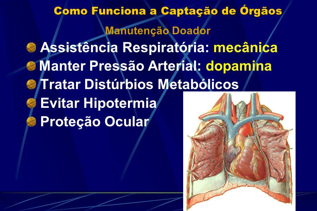 Como Funciona a Captação de Órgãos Manutenção Doador Assistência Respiratória: mecânica Manter Pressão Arterial: dopamina Tratar Distúrbios Metabólicos Evitar Hipotermia Proteção Ocular