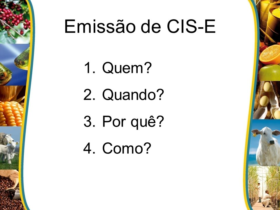 Emissão de CIS-E 1.Quem? 2.Quando? 3.Por quê? 4.Como?