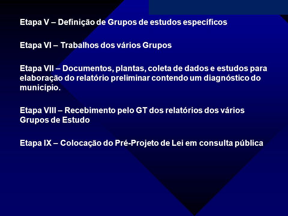 Campanha da Fraternidade 2011 Etapa V – Definição de Grupos de estudos específicos Etapa VI – Trabalhos dos vários Grupos Etapa VII – Documentos, plan