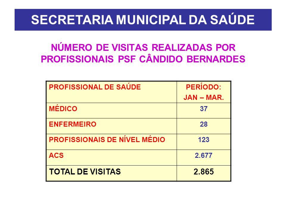 NÚMERO DE VISITAS REALIZADAS POR PROFISSIONAIS PSF CÂNDIDO BERNARDES PROFISSIONAL DE SAÚDEPERÍODO: JAN – MAR.