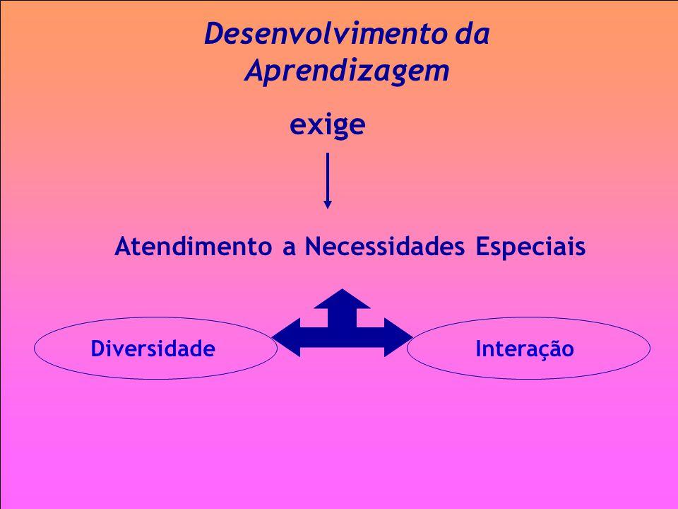 Atendimento a Necessidades Especiais Desenvolvimento da Aprendizagem exige InteraçãoDiversidade