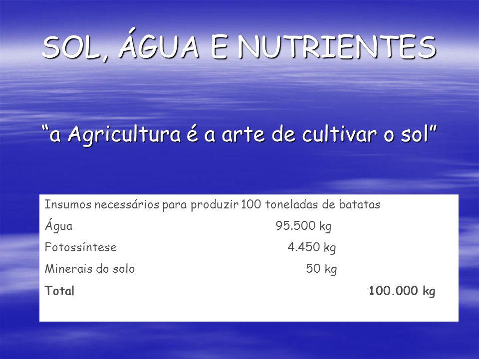 SOL, ÁGUA E NUTRIENTES a Agricultura é a arte de cultivar o sol Insumos necessários para produzir 100 toneladas de batatas Água 95.500 kg Fotossíntese