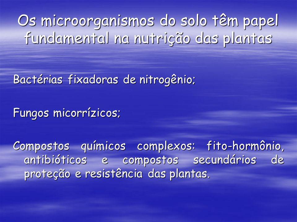 Os microorganismos do solo têm papel fundamental na nutrição das plantas Bactérias fixadoras de nitrogênio; Fungos micorrízicos; Compostos químicos co