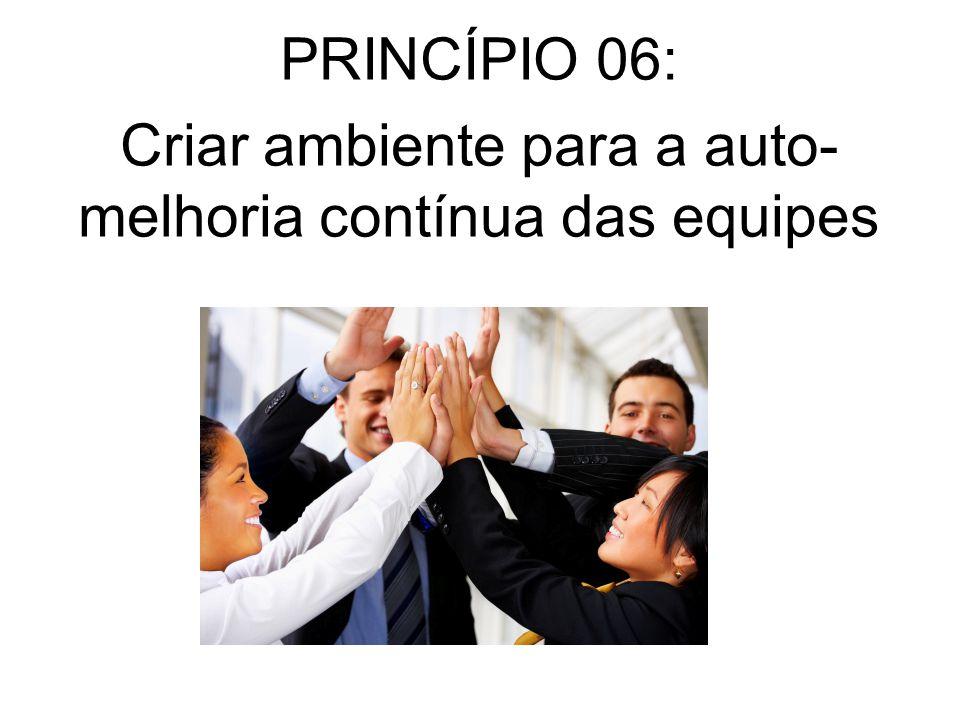 PRINCÍPIO 06: Criar ambiente para a auto- melhoria contínua das equipes